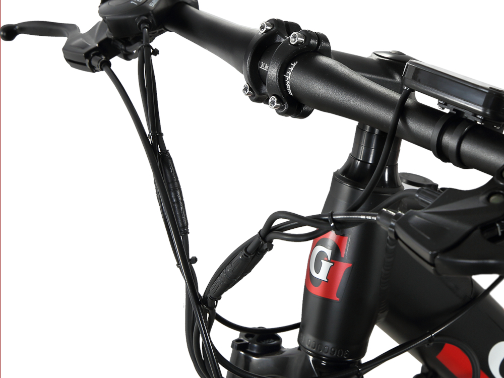 GTWO Electric Bicycle Front G8